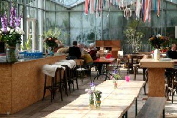 Kweekcafé Haarlem