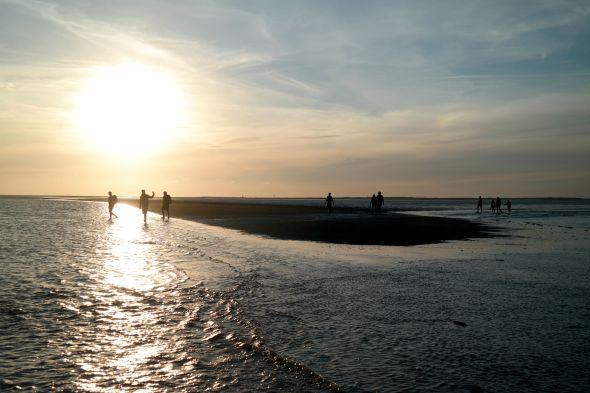 Wadlopen Noordzee