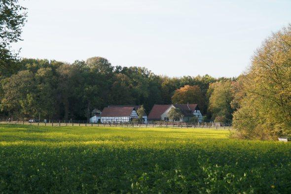 Osnabrück wandelen Rubbenbruchsee