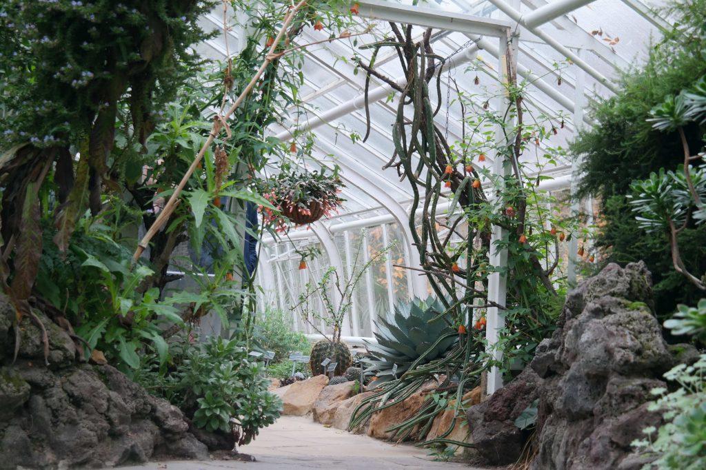 Botanische tuin Münster