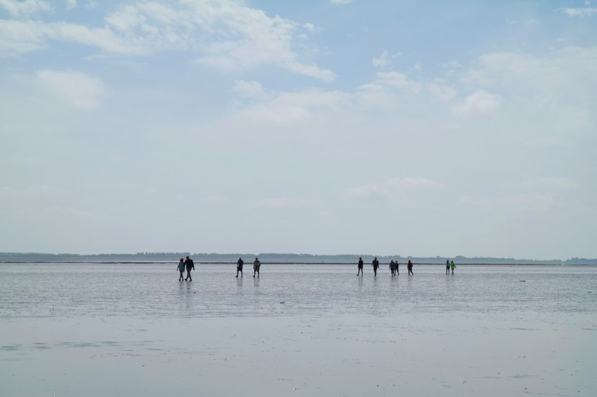 Wadlopen van Lauwersoog naar Schiermonnikoog