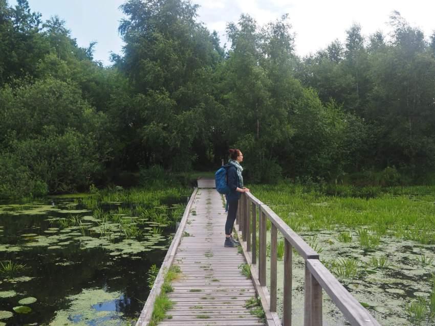 Wandelen in De Deelen Friesland