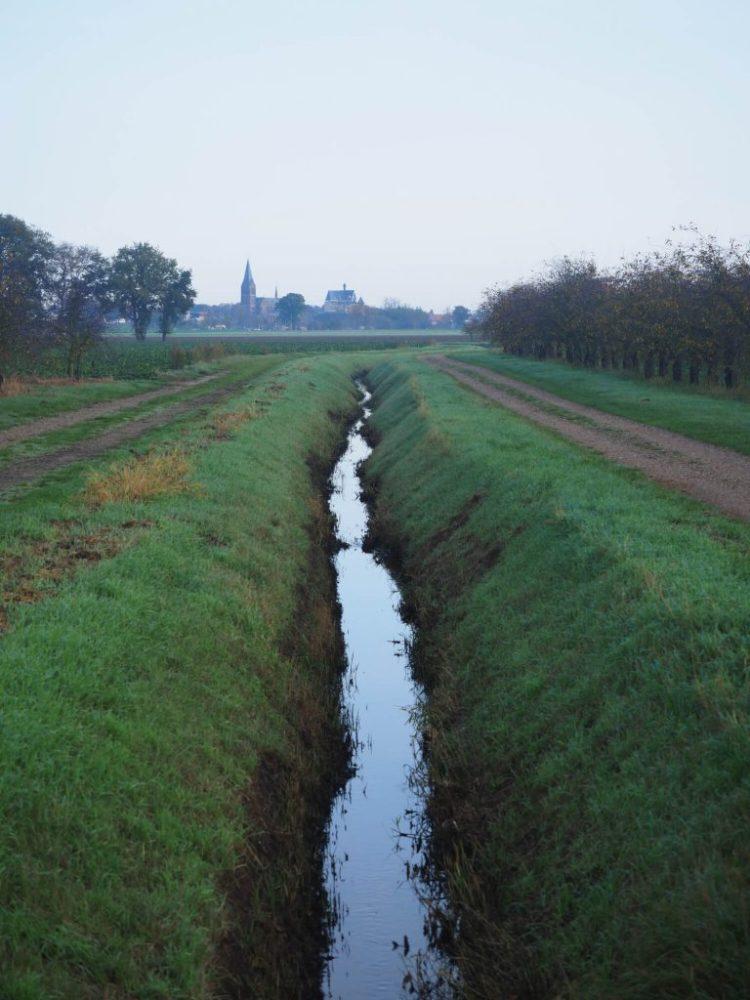 Wandelen in Midden Limburg Beesel