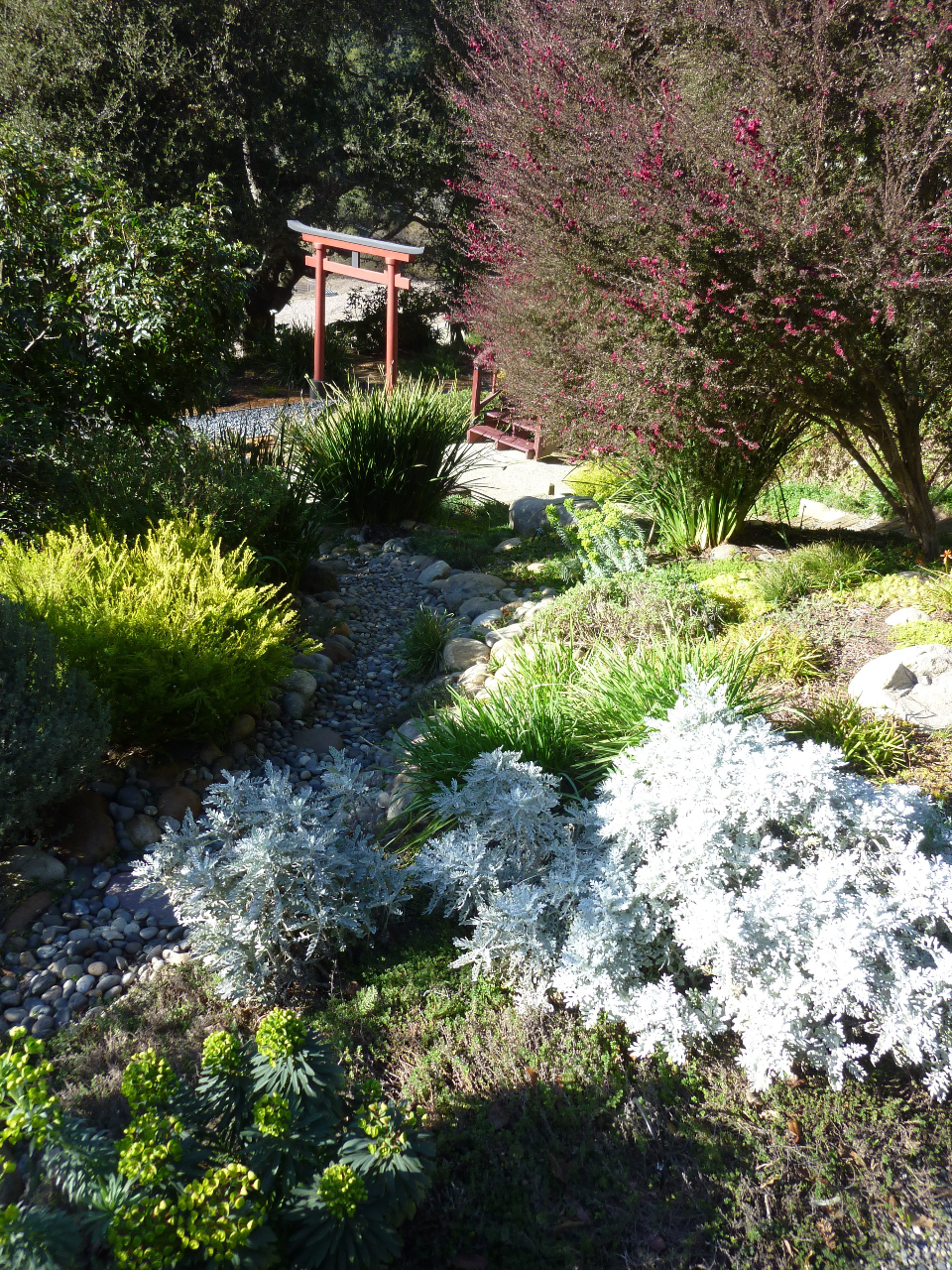 Dry River Beds - Beautiful & Beneficial | Gardening Tips ...