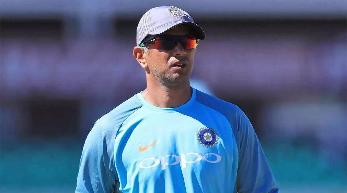 After T20 World Cup Rahul Dravid likely to interim coach for New Zealand series few Australian coaches expressed interest team India Head Coach but BCCI not keen