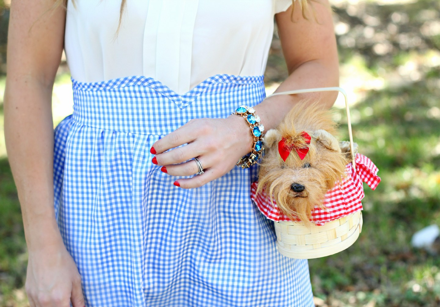 Sparkles, Gingham and Bows, Oh My
