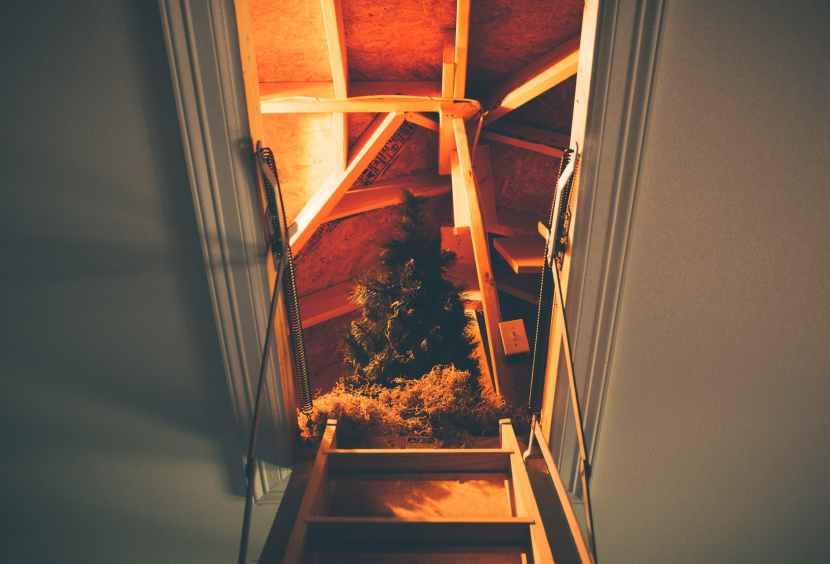 fir tree decor