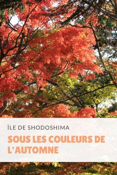 île-de-shodoshima-01