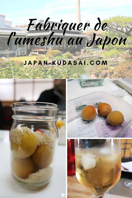 Apprendre à fabriquer l'umeshu, l'alcool de prune japonais, dans une brasserie au Japon