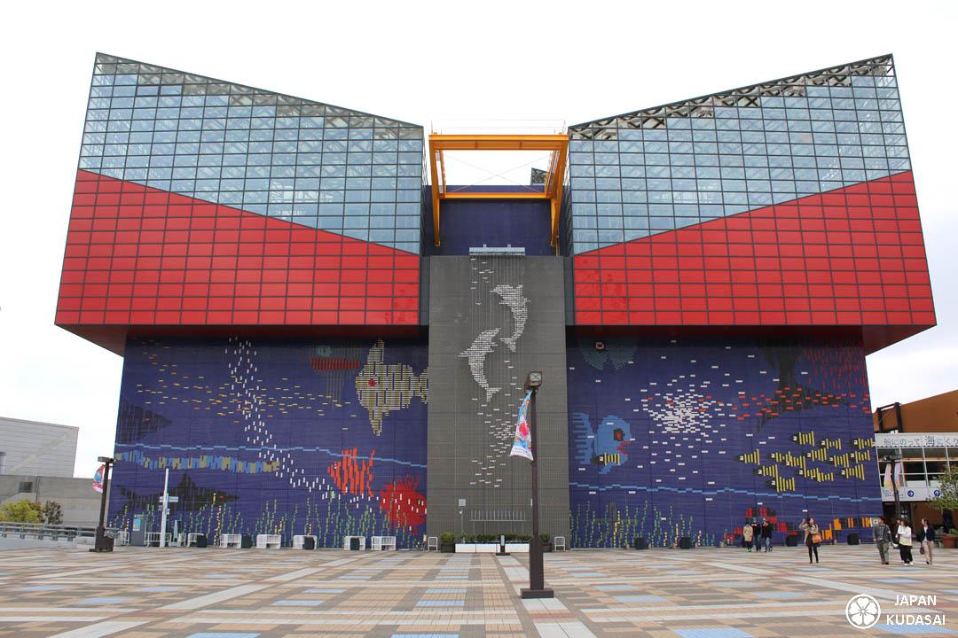 L'aquarium d'Osaka Kaiyukan est très célèbre avec son requin baleine. Un incontournable pour tout voyage au Japon et dans le Kansai, surtout avec des enfants.