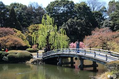 pont japonais parc shinjuku gyoen mae