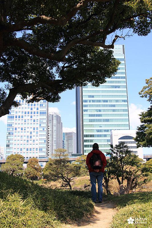 Jardin Kyu-Shiba-rykyu garden de Tokyo (18)