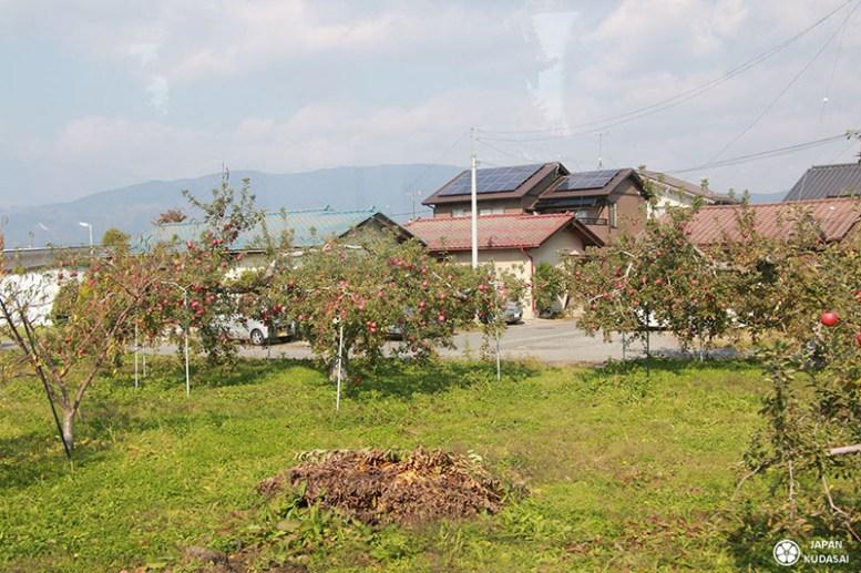 Obuse-nagano-temple (3)