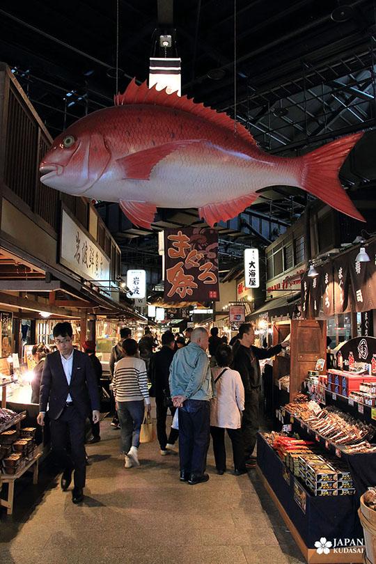 Thon rouge - marché Kuroshio (31)