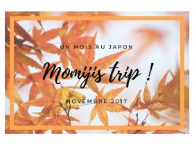 Automne 2017 – Voyage d'un mois au Japon : c'est parti !