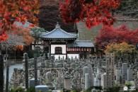 Kyoto secret : explorez Arashiyama Nord !