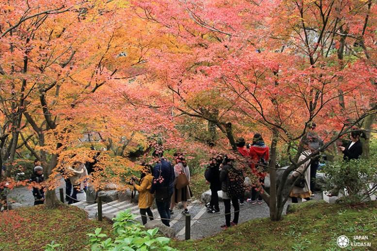 automne-kyoto-temple-tofukuji (14)