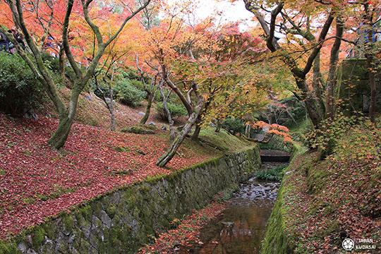 automne-kyoto-temple-tofukuji (18)