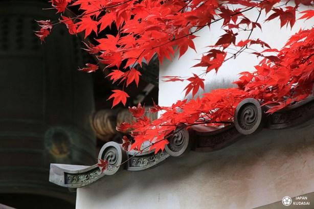 automne-kyoto-temple-tofukuji (23)