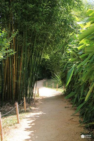 bambouseraie-en-cevennes (6)