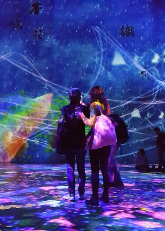 expo-teamlab-paris (4)