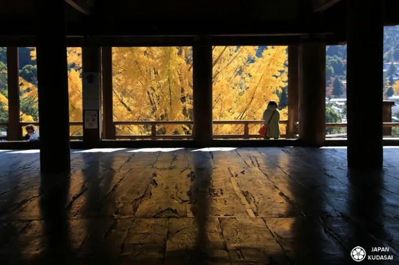 feuilles-automne-05