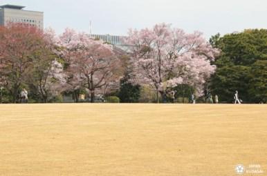 jardin-imperial-tokyo-09