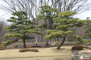 jardin-imperial-tokyo-11