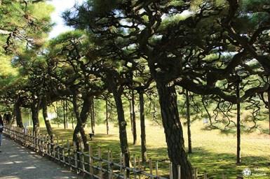 jardin-ritsurin-takamatsu (9)