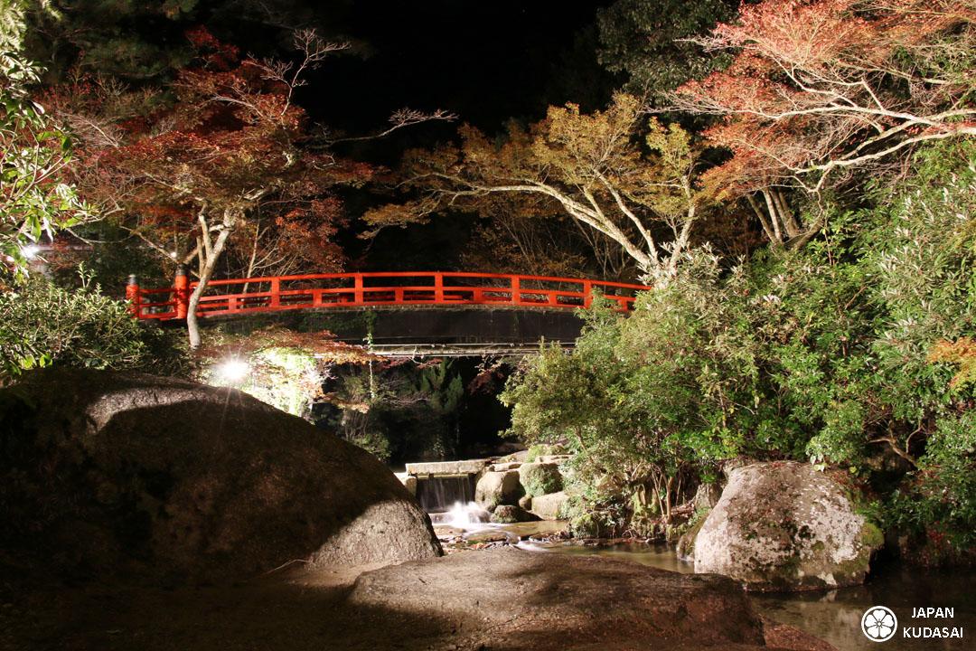 Le parc momijidani à Miyajima est célèbre pour ses érables rougs à l'automne et ses momijis.