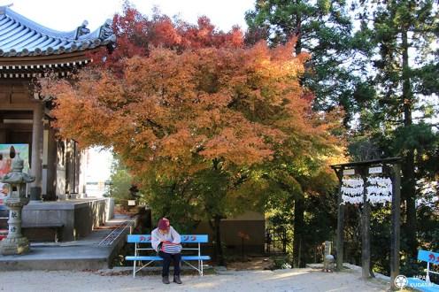 mont-misen-miyajima (12)