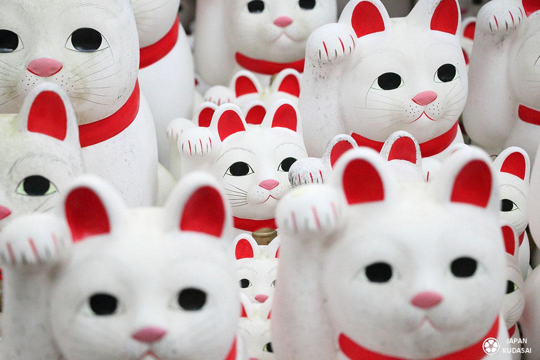chat bonheur menki neko japon temple tokyo