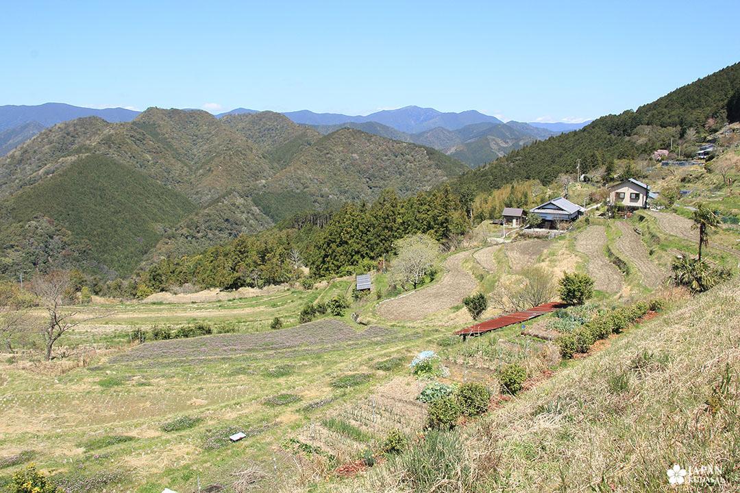 Takahara viewpoint