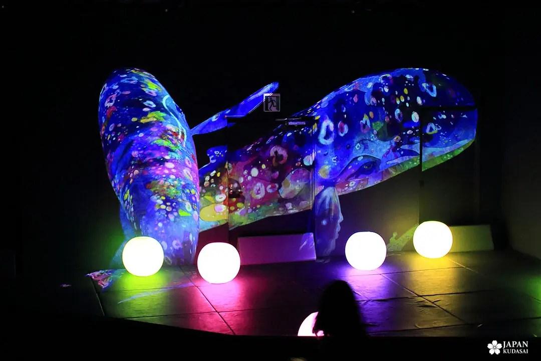 baleine numérique animée