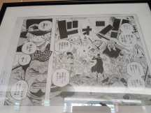 one-piece-exposition-TGS