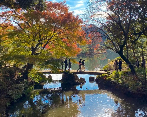 A Sunday in Rikugien Gardens