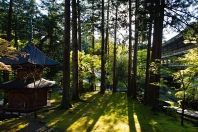 Eiheiji Temple | Fukui Travel Guide