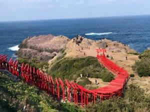 Japan Spring Tour  Sakura Package 21 Days
