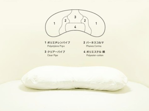 The pillow. With instructions.