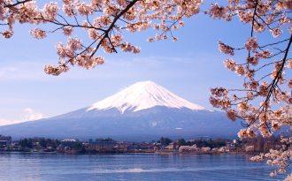 Körsbärsblommornas Japan