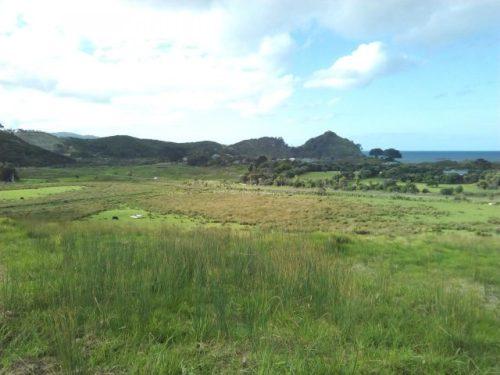 グレートバリア島Medlands Beach