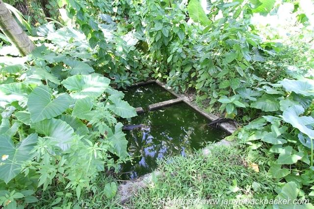 日本軍の貯水池