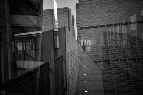 shinagawa-multi_ALF4342