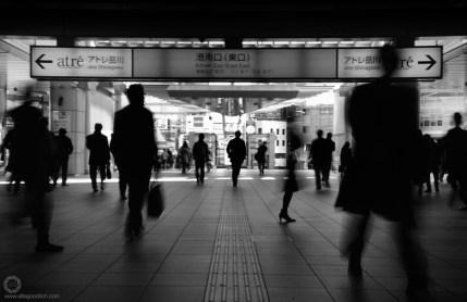 shinagawa_ALF1583