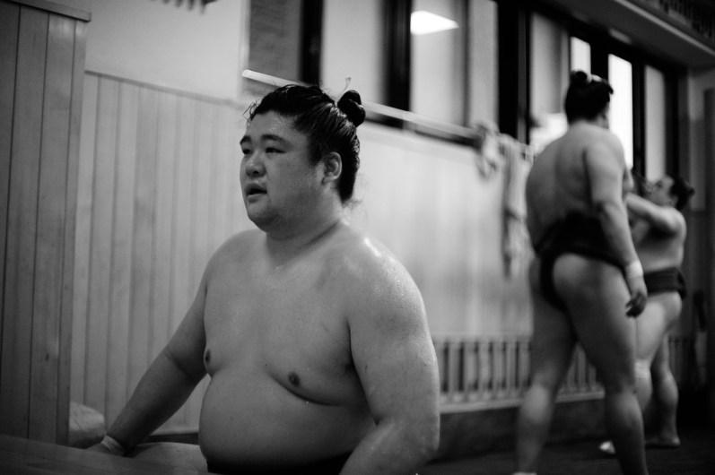 ALF_8532_sumo-small