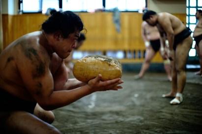 ALF_8649_sumo-small