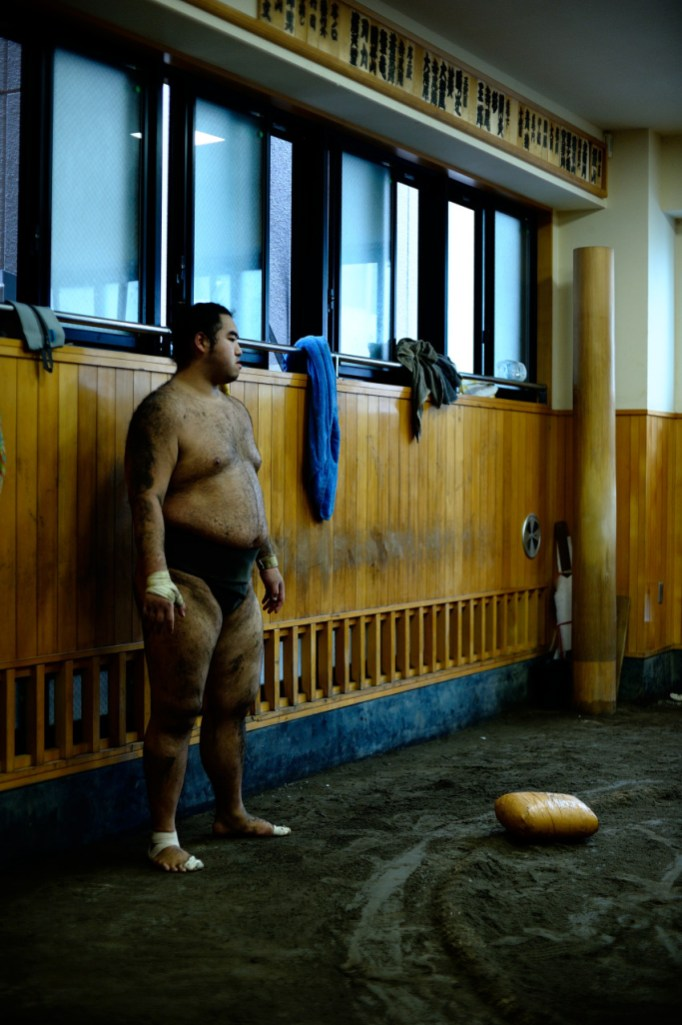 ALF_8715_sumo-small