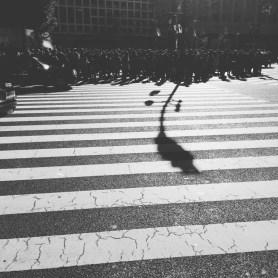 2016-16iphone_img_0575