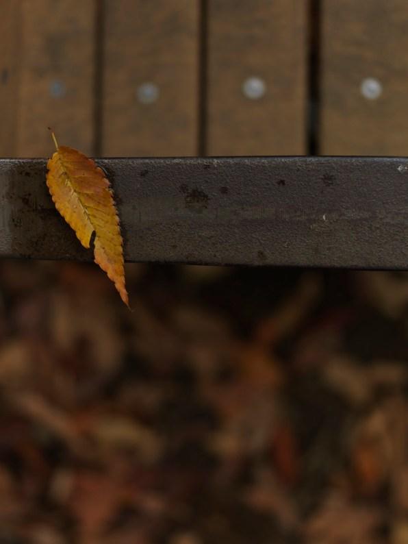AG-autumn2017-small_9339466