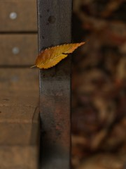 AG-autumn2017-small_9339467